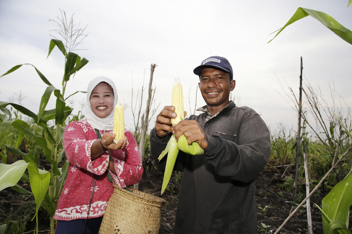 Farmers in Binjai, Meranti