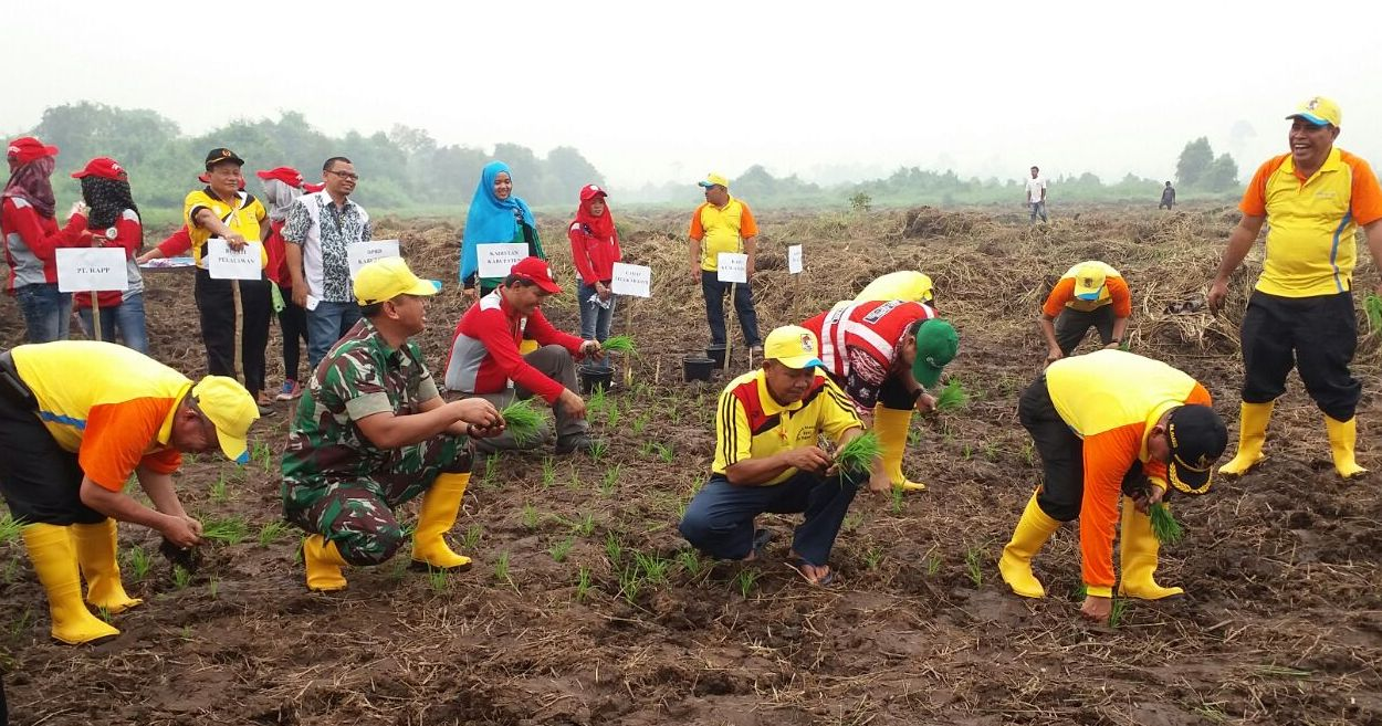 Villagers in the Fire Free Village Program (FFVP) planting agricultural assistance